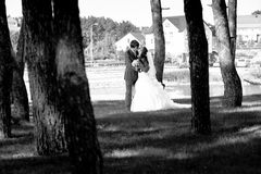 Bride and groom kissing at forest near lake Royalty Free Stock Images