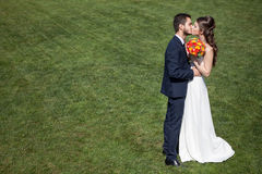Bride and groom kissing on green grass Stock Photo
