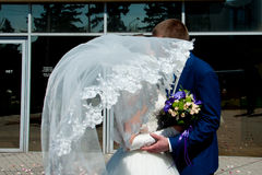 Bride and groom kissing hiding behind veil Stock Photos