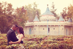 Bride and groom kissing near castle Royalty Free Stock Images