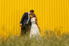 Bride and groom kissing near a yellow wall Stock Photo