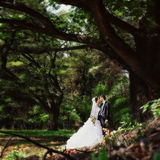 Bride and groom kissing in park Royalty Free Stock Images