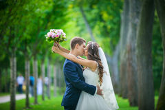 Bride and groom kissing in park Royalty Free Stock Image