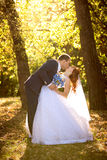 Bride and groom kissing passionately at autumn park Royalty Free Stock Images