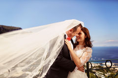Bride and groom kissing with sea scape in background Royalty Free Stock Photo