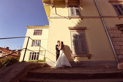 Bride and groom kissing in the sunlight Stock Images