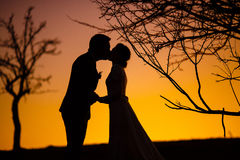 Bride and groom kissing in the sunset Stock Photography