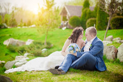 Bride and Groom, Kissing at Sunset on grass Romantic Married Couple Stock Images