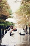 Bride and groom kissing under umbrella Royalty Free Stock Image
