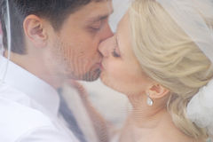 Bride and groom kissing under the veil Stock Photos