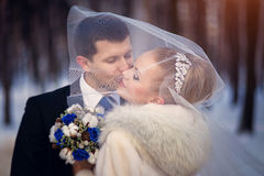 The bride and groom kissing under the veil. Wedding photo session in the winter outdoors Stock Photo