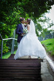 Bride and groom are kissing Royalty Free Stock Photography