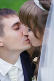 Bride and groom are kissing Stock Image