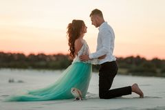 Bride and groom kneel and look at each other next to owl in desert. Royalty Free Stock Photography