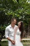 The bride and groom laugh about an exotic flowering tree. Wedding on a tropical island stock photography
