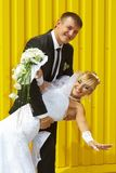 Bride and groom laugh Royalty Free Stock Image