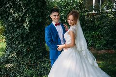 The bride and groom laugh and joke with each other, posing against the background of greenery. The bride and groom laugh and joke with each other, posing Stock Photography