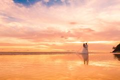 Bride and groom with long veil on tropical beach at sunset. Wedd stock photo