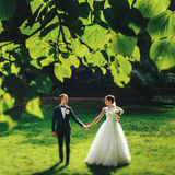 Bride and groom look at each other walking in the park Stock Images