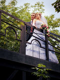Bride and groom are looking into the distance Royalty Free Stock Image