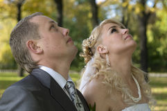 Bride and groom looking up stock images