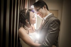 Bride and Groom. In love Royalty Free Stock Image
