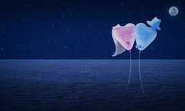 Bride and Groom love heart balloon on fantasy night sky Royalty Free Stock Image