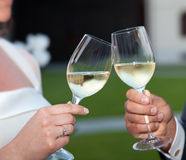 Bride and groom making a toast Stock Images