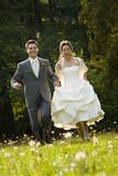 Bride and groom in meadow royalty free stock image
