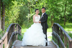 Bride and groom in nature. The bride and groom posing on a wooden bridge in nature, holding hands and looking at camera Stock Photo