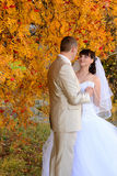 The bride and the groom near an autumn tree Royalty Free Stock Photography