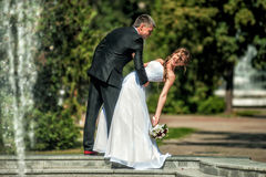 Bride and groom. Near the fountain in the park on wedding walk Royalty Free Stock Image