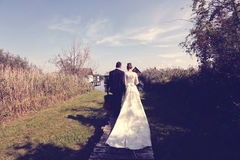 Bride and groom near lake Stock Photography