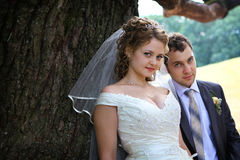 Bride and groom near oak Stock Photography