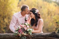 The bride and groom near the wooden fence. The guy kisses the girl on the forehead. Wedding in pink colors. The girl has stock image