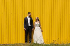 Bride and groom near a yellow wall Stock Photography