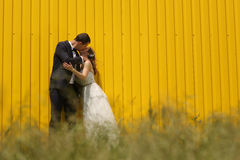 Bride and groom near a yellow wall Royalty Free Stock Photo