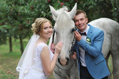 Bride and groom next to a beautiful thoroughbred horse on the lawn. Stock Photo