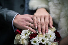 Bride and groom next to wedding rings on their hands, male and female hand with wedding rings Royalty Free Stock Photo