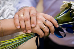 Bride and groom next to wedding rings on their hands, male and female hand with wedding rings Stock Photos