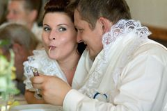 Bride and groom in one soup Royalty Free Stock Photo