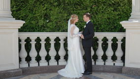 Bride and groom outdoor stock footage