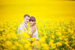 Bride and groom outdoor sunlight standing in a yellow field hug, Stock Photography