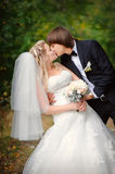 Bride and groom outdoors park closeup portrait Royalty Free Stock Photos