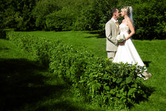 Bride and groom in the park Stock Photography
