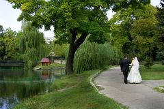 Bride and groom in a park stock photo