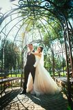 The bride and groom in the park arch.  Stock Images