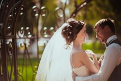 The bride and groom in the park arch.  Royalty Free Stock Photos