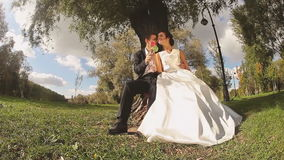 Bride and Groom in the Park with Candies in Hands. Wedding Couple Bride and Groom in the Park Sitting near the Tree with Candies in Hands stock footage