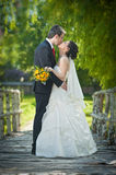 Bride and groom in a park kissing Royalty Free Stock Image